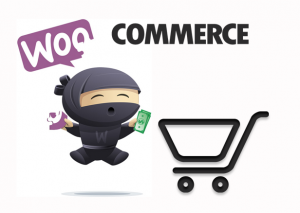 woocommerce scheduler